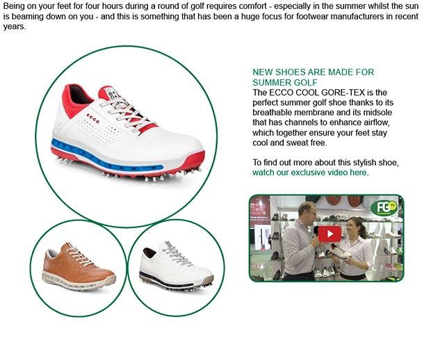 ECCO Shoe Article